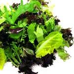 Blandet Salat Tallerken