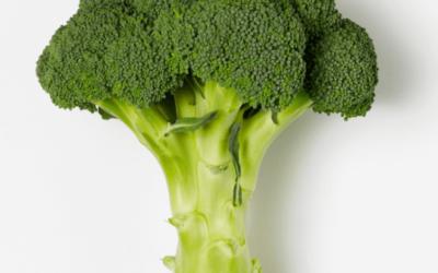 Brokkolisalat med skinke